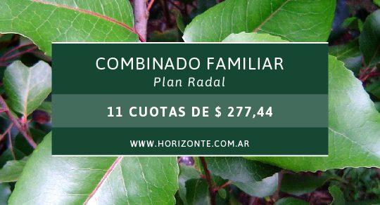 combinado_RADAL